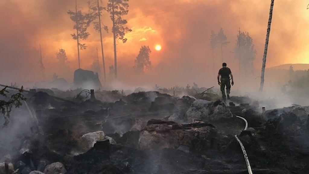 Skogsbrand Ljusdal 2018, Per Ekdahl