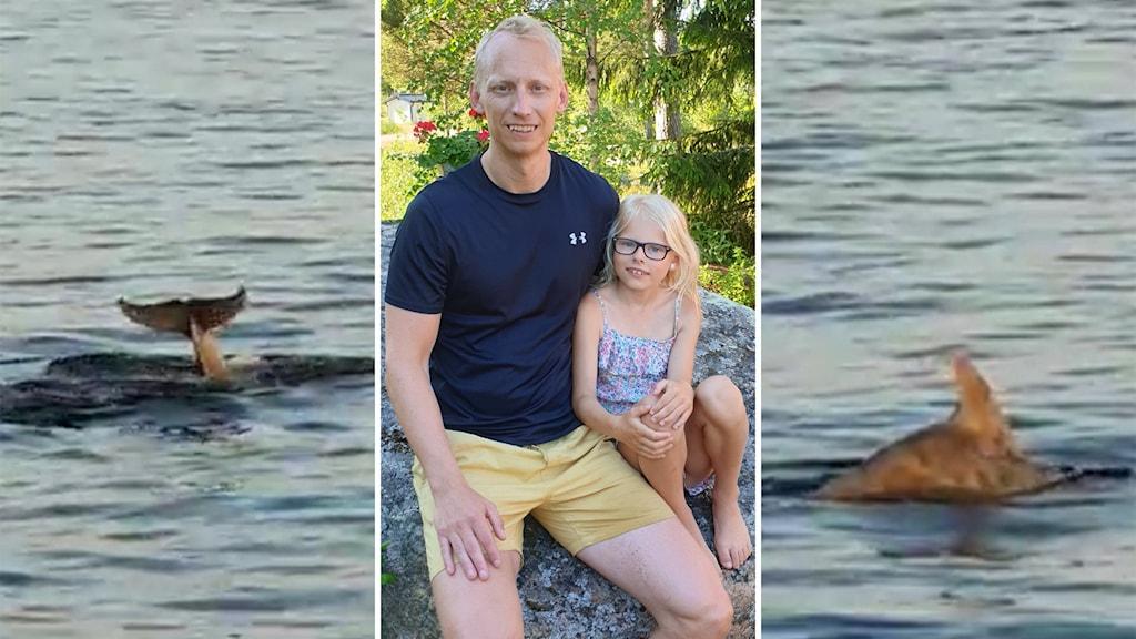 Två bilder på delfinen och en bild på Christian Eriksson och hans systerdotter Stella Hallberg.