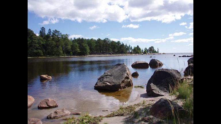 Här i Sörfjärden är det många som är kritiska till kommunens planer på ett reningsverk. Foto: Länsstyrelsen