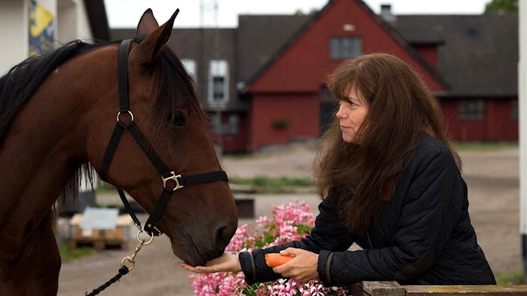 Christina Olsson, från Alfta, är just nu i Nederländerna där hennes häst Astoria (inte den häst som är på bilden) är med i unghäst-VM i dressyr.