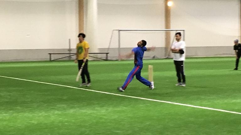 Ashoq Amanze cricketspelare i Gävle.
