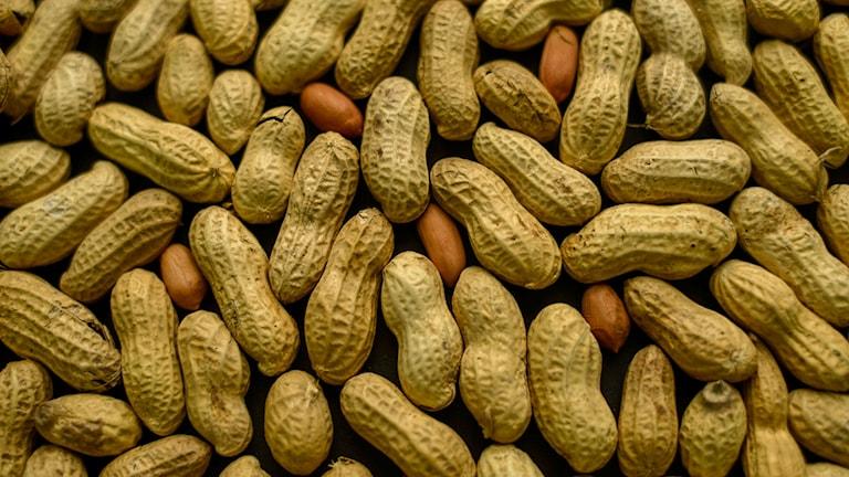 Jordnötter förbjuds nu i Region Gävleborgs lokaler.