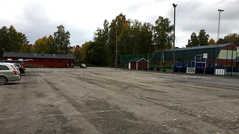 Platsen där parken ska byggas