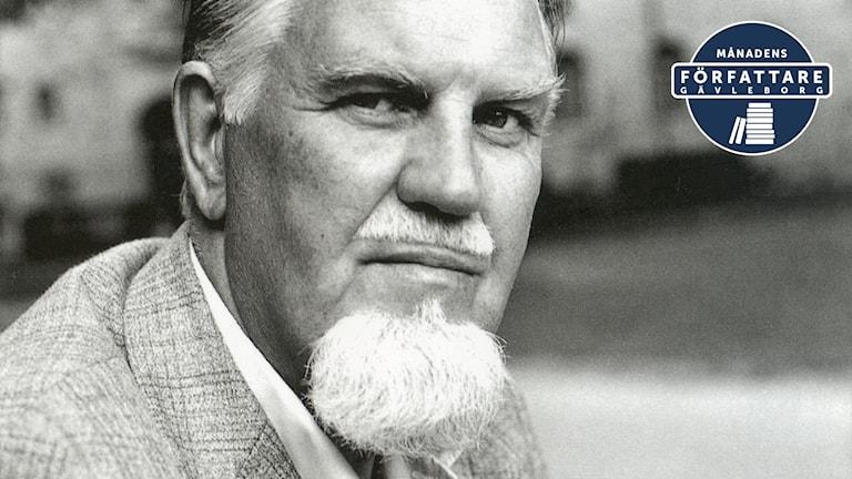 Stig Sjödin