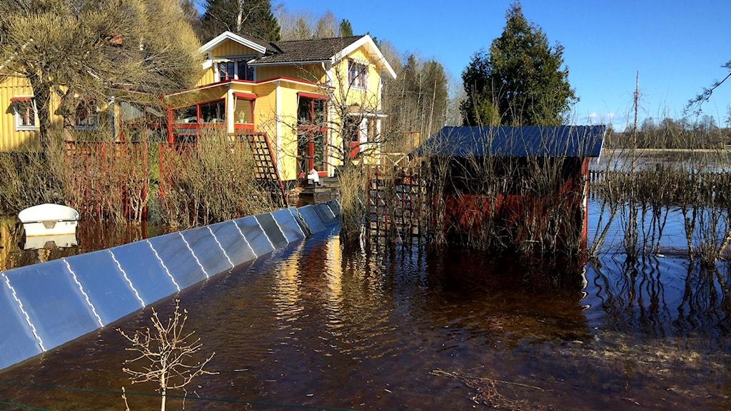 Vattenmassor Forsby Översvämning Vårflod