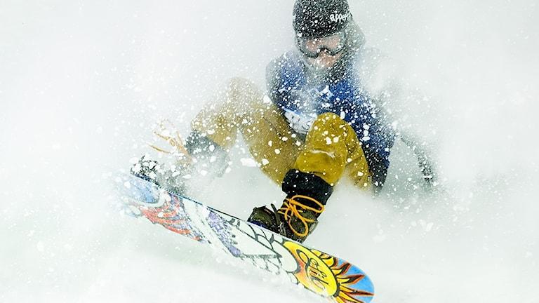 En person som åker snowboard i färgglada blå och senapsgula kläder. Personen är täckt av flygande snö och ansiktet, som täcks av en hjälm och goggles, syns knappt.
