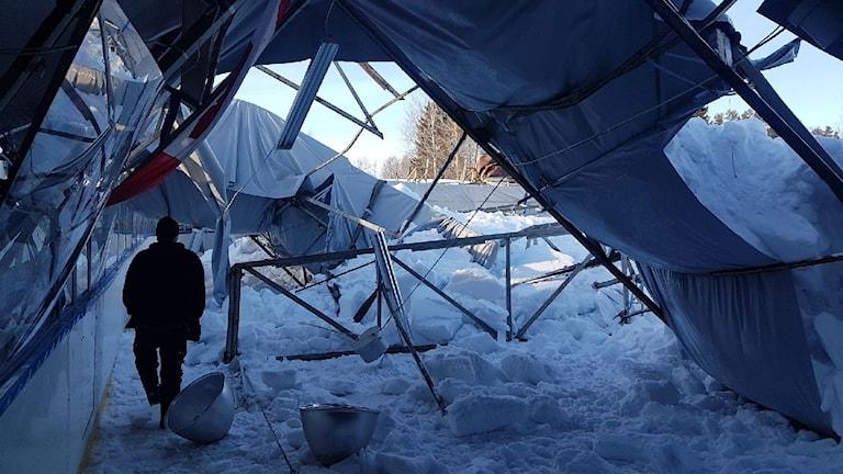 Takets stålkonstruktion gav vika av snömassorna.