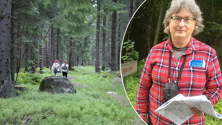 En genrebild till vänster på en skogspromenad och till höger ser vi arkeologen Elise Hovanta.