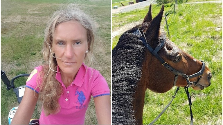 Kristin Norlander och hästen Trooper, en brun häst med svart man.