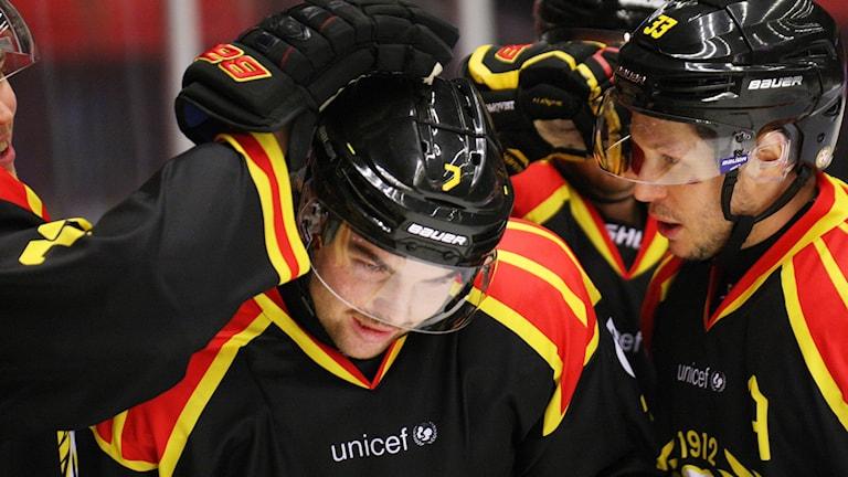 sdltb86c25f-nh Pontus Westerholm Brynäs hockey
