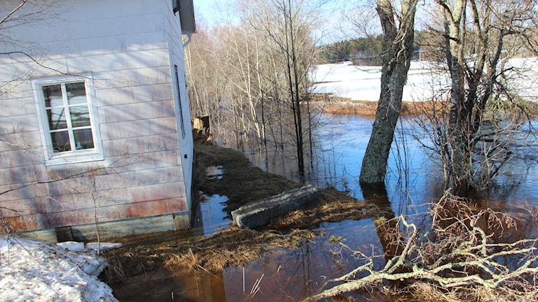 River water reaches a house in Söderhamn municipality, Gävleborg County.