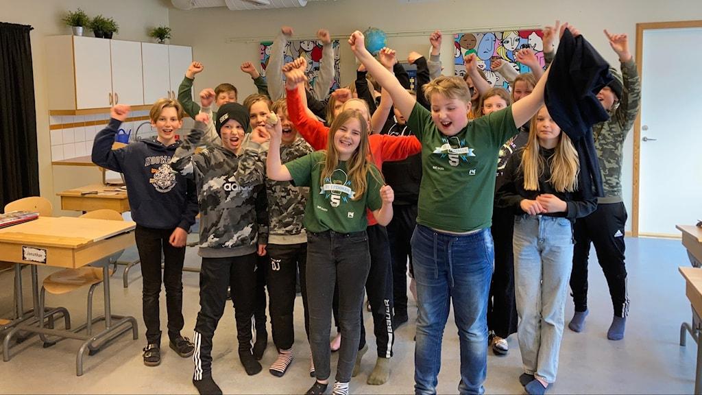 Ludvigsbergsskolan 5A