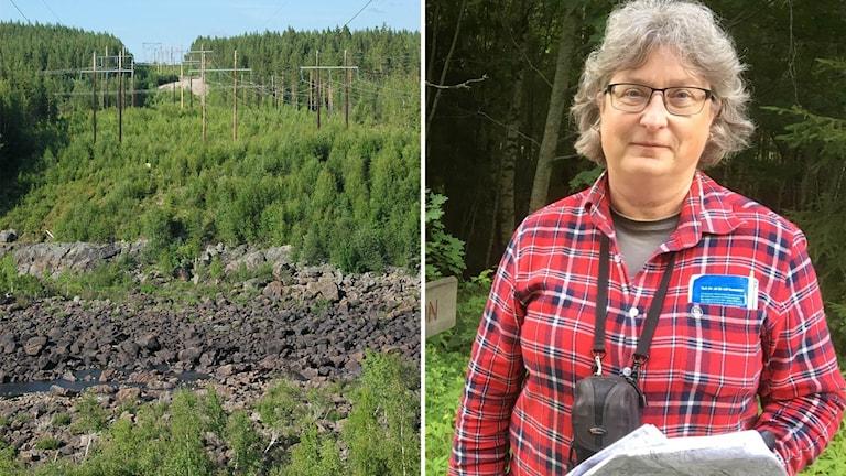 Elise Hovanta och Laforsens boplats