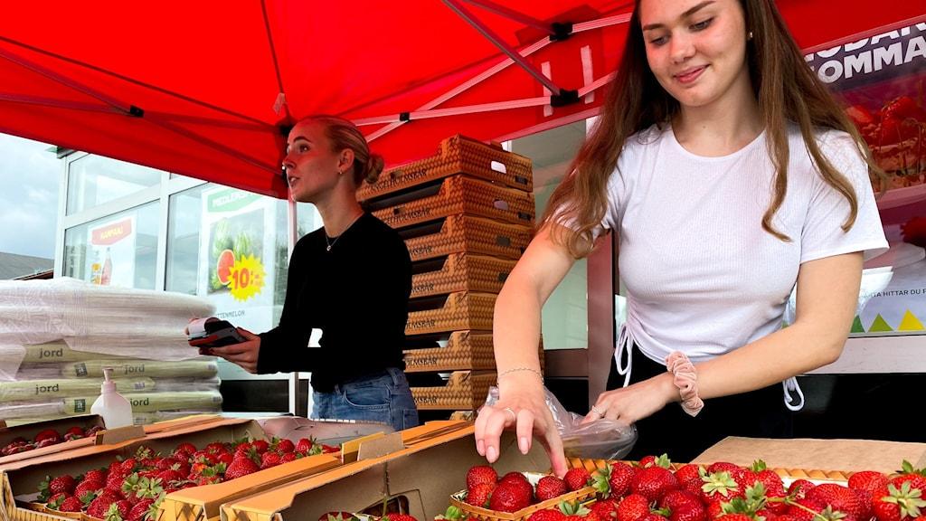 Två tjejer med jordgubbar i förgrunden.