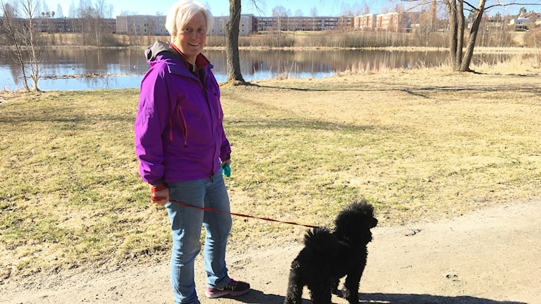 Lena Rieback besväras inte av Skrattmåsarna kring Björktjäratjärn i Bollnäs.