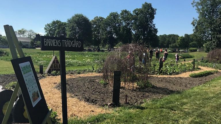 Barnens trädgård, Wij trädgårdar.